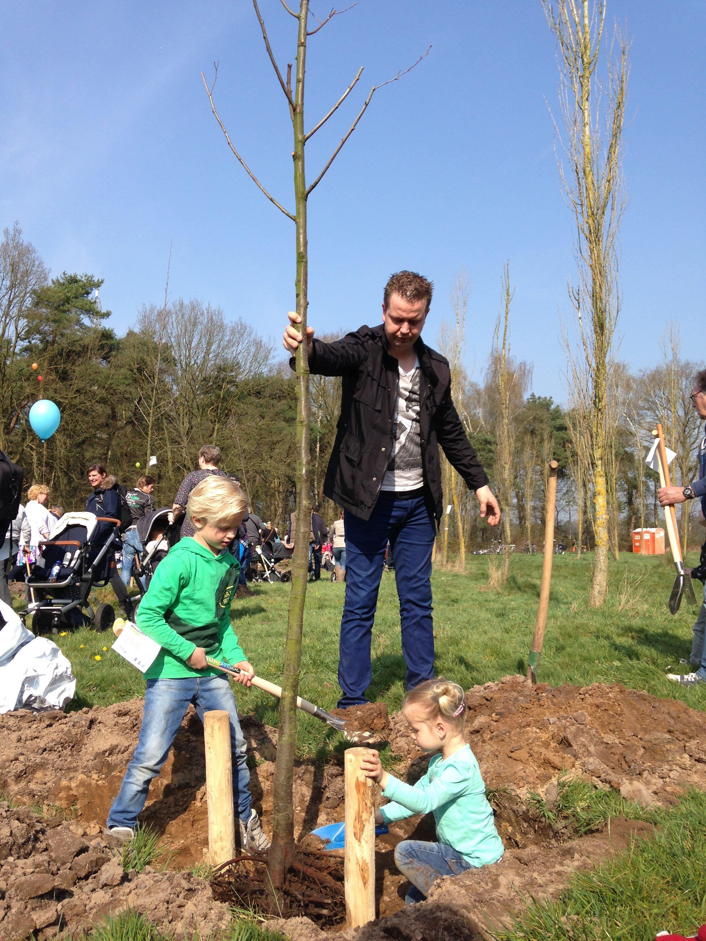 Geboorteboom Tilburg (planten) - Bomen