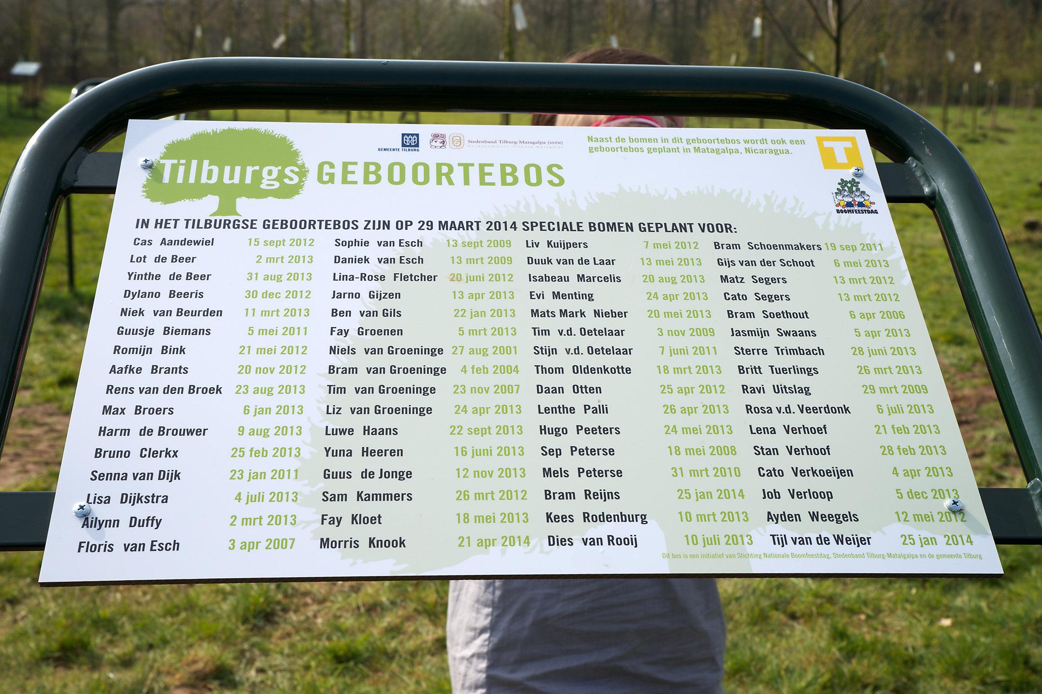 Geboorteboom Tilburg (plaquette) - Bomen