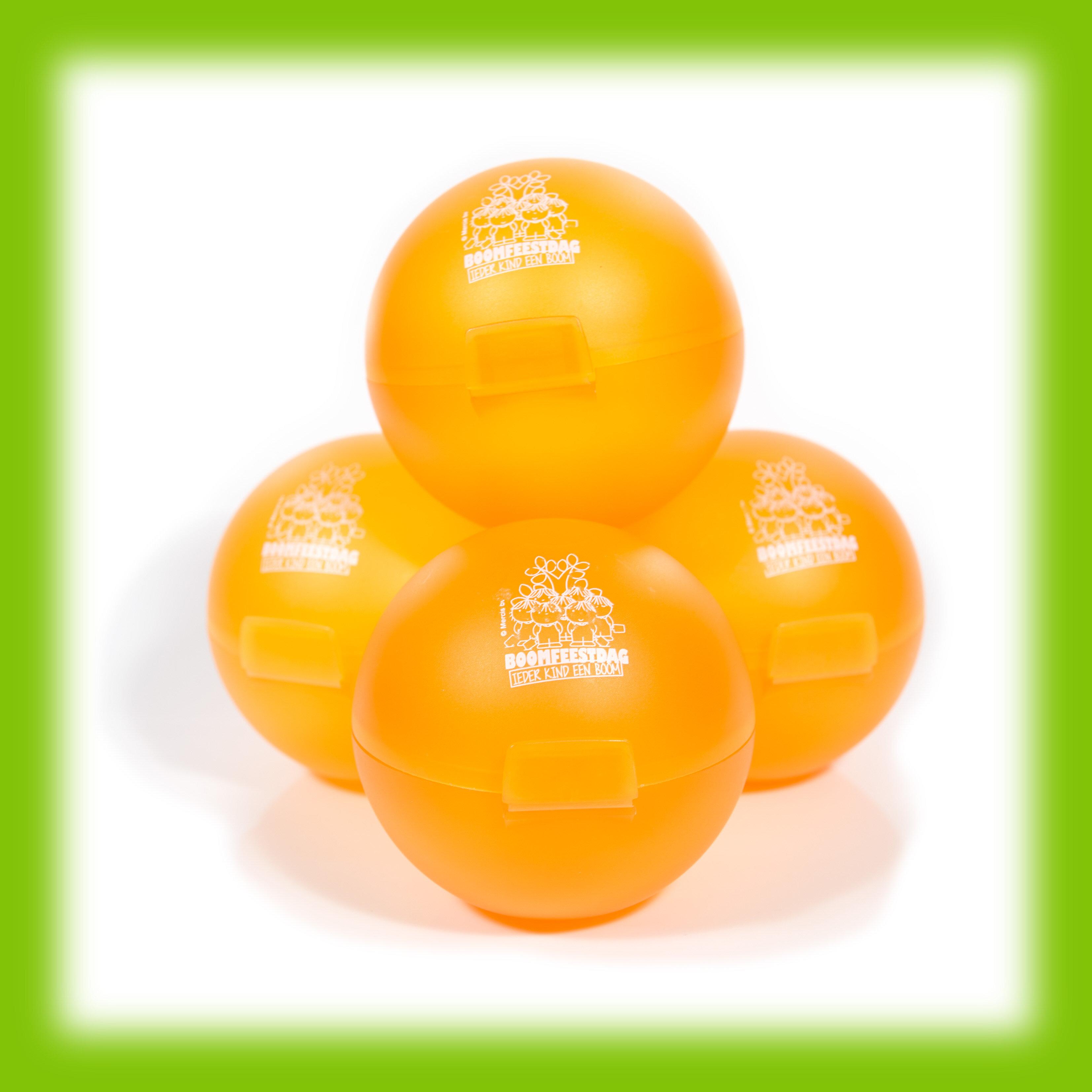 Boomfeestdag Appelbox Oranje, set van 10 - herinneringsartikel